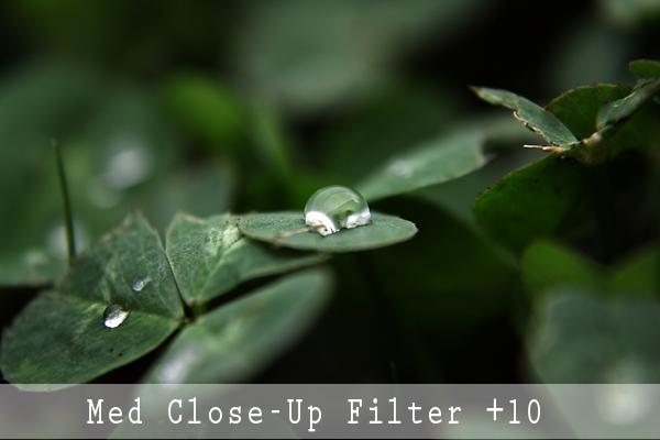 Fotografering med Close-Up