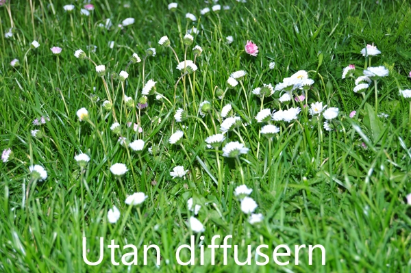 Utan diffusor