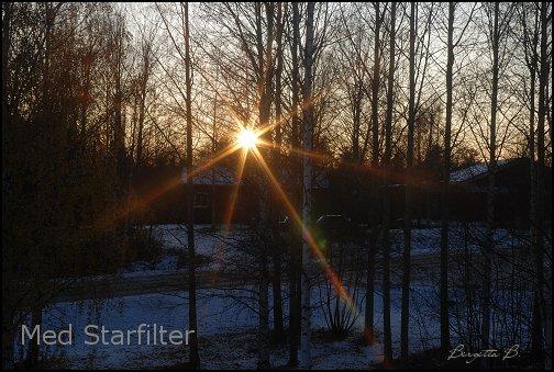 birgitta_starfilter1